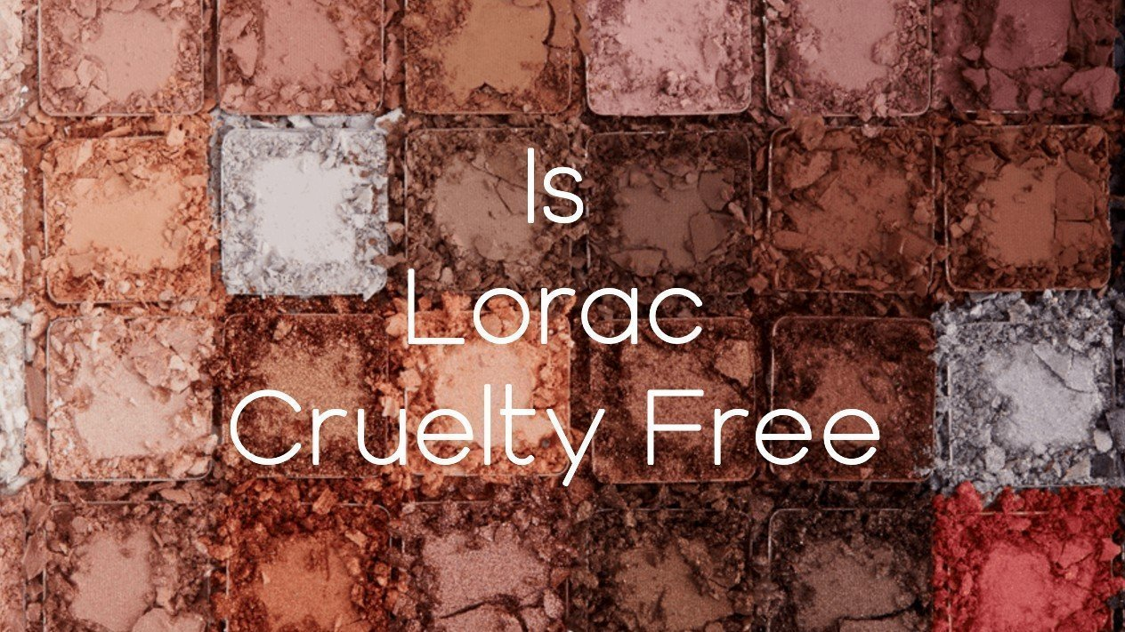 Is Lorac Cruelty Free - A-Lifestyle